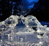 Ledo skulptūra