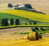 Toskanos kraštovaizdis
