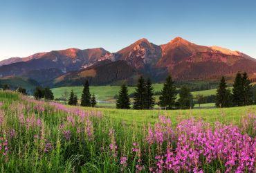 Slovakijos Tatrai