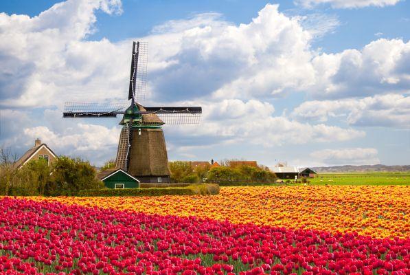 Malūnas Olandijoje