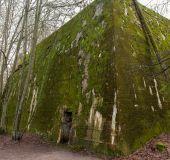 Hitlerio bunkeris Vilko guolis
