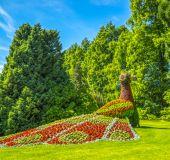 Mainau botanikos sode
