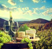Vynuogynai Italijoje