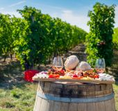 Vyno ūkis Rumunijoje