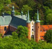 Olivos katedra