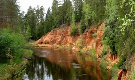 Gaujos upė