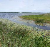 Žuvinto biosferos rezervatas