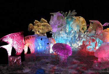 Jelgava (ledo skulpūrų festivalis)