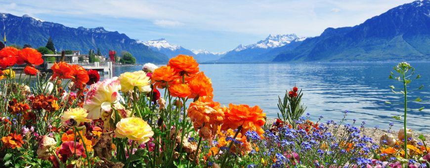 Ežeras Šveicarijoje